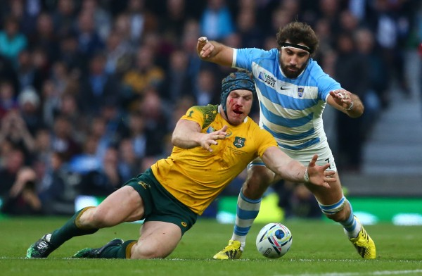LONDON, ENGLAND - OCTOBER 25: David Pocock of Australia and Juan Martin Fernandez Lobbe of Argentina compete for the ball during the 2015 Rugby World Cup Semi Final match between Argentina and Australia at Twickenham Stadium on October 25, 2015 in London, United Kingdom. (Photo by Stu Forster/Getty Images)