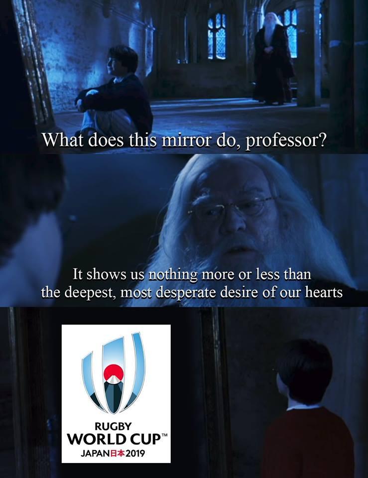 Harry Potter Rugby Meme